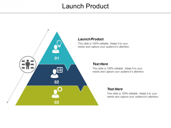 Launch Product Ppt PowerPoint Presentation Gallery Designs Download Cpb