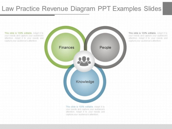 Law Practice Revenue Diagram Ppt Examples Slides