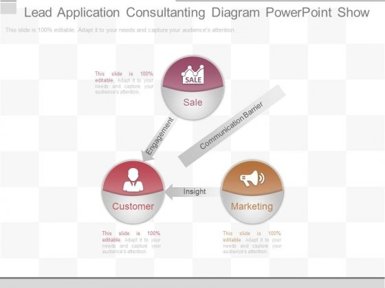 Lead Application Consultanting Diagram Powerpoint Show