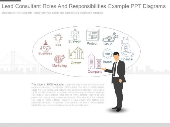Lead Consultant Roles And Responsibilities Example Ppt Diagrams