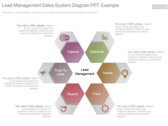 Lead Management Sales System Diagram Ppt Example