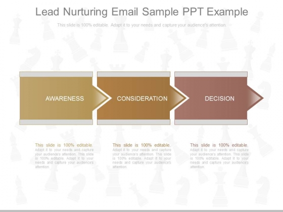 Lead Nurturing Email Sample Ppt Example
