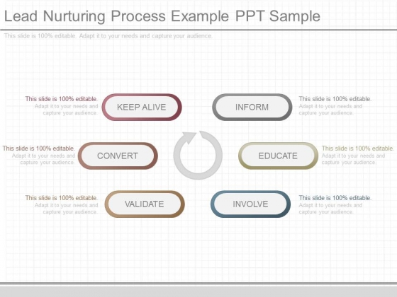 Lead Nurturing Process Example Ppt Sample