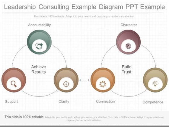 Leadership Consulting Example Diagram Ppt Example