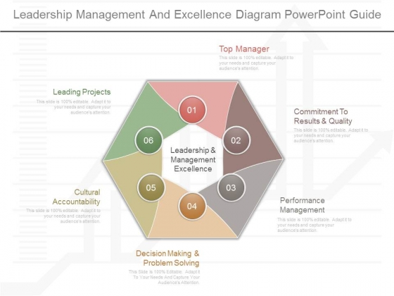 Leadership Management And Excellence Diagram Powerpoint Guide