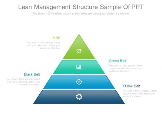 Lean Management Structure Sample Of Ppt