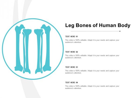 Leg Bones Of Human Body Ppt Powerpoint Presentation Infographic Template Show