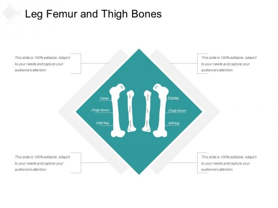 Leg Femur And Thigh Bones Ppt Powerpoint Presentation Professional Themes