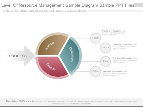 Level Of Resource Management Sample Diagram Sample Ppt Files