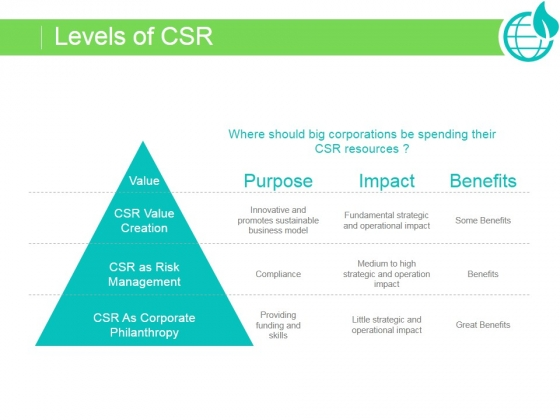Levels Of Csr Ppt PowerPoint Presentation Examples
