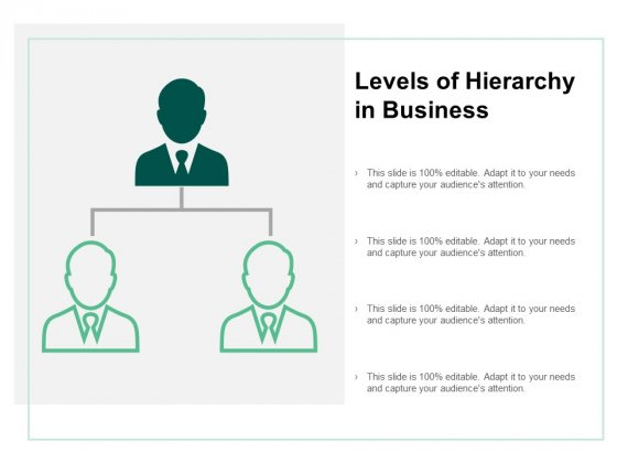 Levels Of Hierarchy In Business Ppt PowerPoint Presentation Infographics Summary