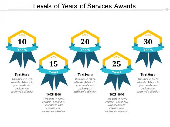 Levels Of Years Of Services Awards Ppt PowerPoint Presentation Icon Layouts