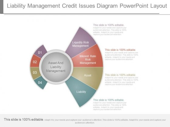 Liability Management Credit Issues Diagram Powerpoint Layout