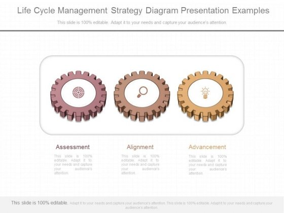 Life Cycle Management Strategy Diagram Presentation Examples