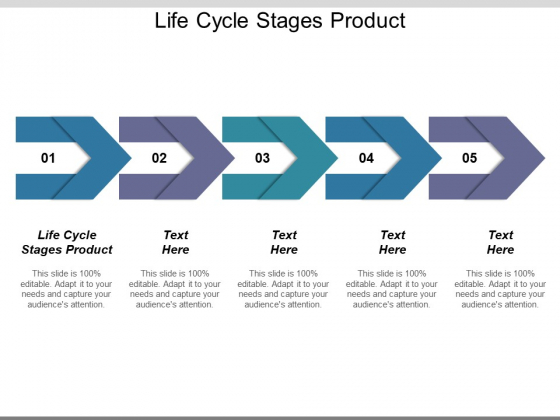Life Cycle Stages Product Ppt PowerPoint Presentation Infographic Template Layout Ideas