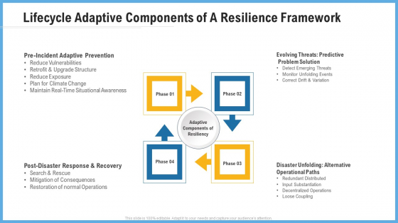 Lifecycle Adaptive Components Of A Resilience Framework Background PDF