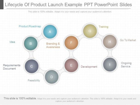Lifecycle Of Product Launch Example Ppt Powerpoint Slides