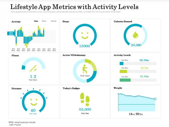 Lifestyle App Metrics With Activity Levels Ppt PowerPoint Presentation Gallery Tips PDF