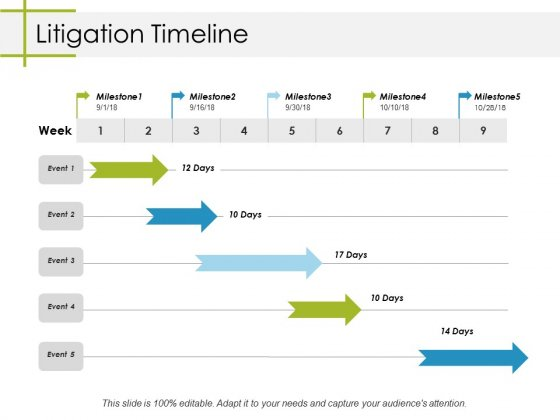 Litigation Timeline Ppt PowerPoint Presentation Icon Slides