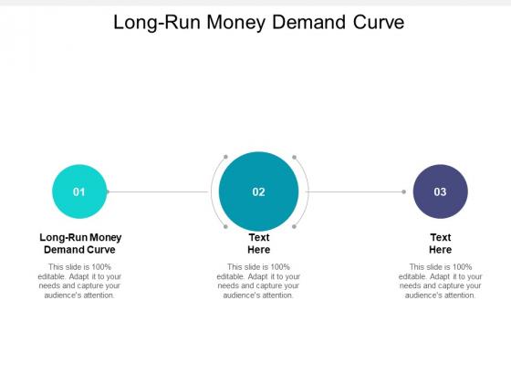Long Run Money Demand Curve Ppt PowerPoint Presentation Summary Format Ideas Cpb Pdf