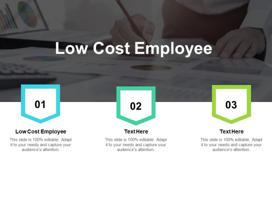 Low Cost Employee Ppt PowerPoint Presentation Summary Model Cpb
