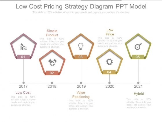 Low Cost Pricing Strategy Diagram Ppt Model