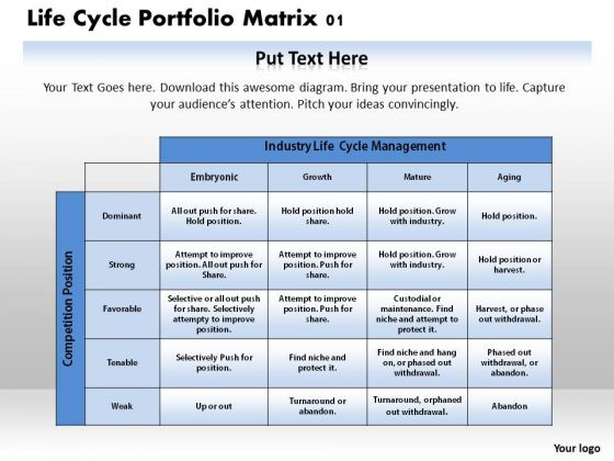 Life Cycle Portfolio Matrix 01 Business PowerPoint Presentation