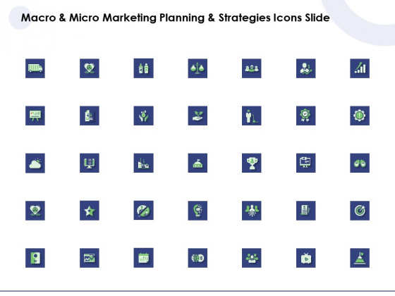 Macro And Micro Marketing Planning And Strategies Icons Slide Ppt Outline Master Slide PDF