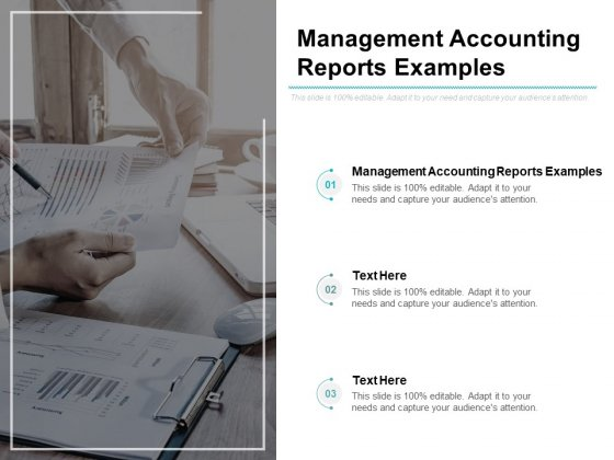 Management Accounting Reports Examples Ppt PowerPoint Presentation Infographic Template Layout Cpb