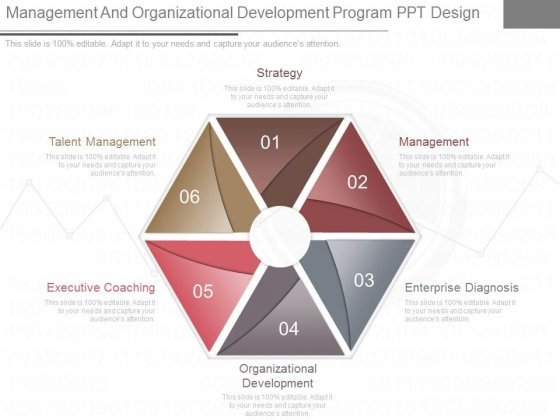 Management And Organizational Development Program Ppt Design