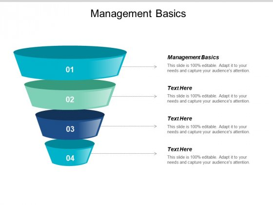 Management Basics Ppt PowerPoint Presentation Styles Graphics Example Cpb