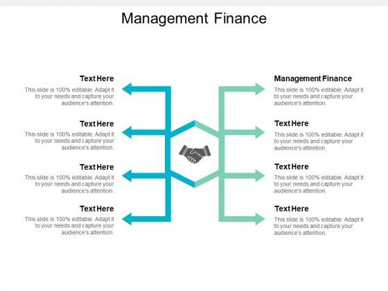 Management Finance Ppt PowerPoint Presentation Professional Portfolio Cpb