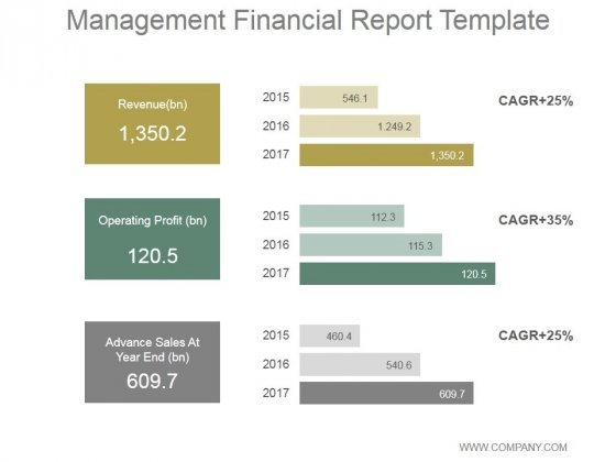 Management Financial Report Ppt PowerPoint Presentation Diagrams