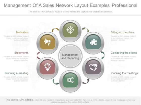 Management Of A Sales Network Layout Examples Professional