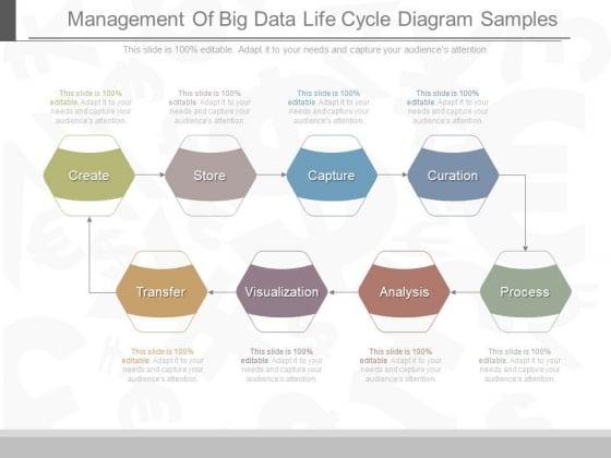 Management Of Big Data Life Cycle Diagram Samples