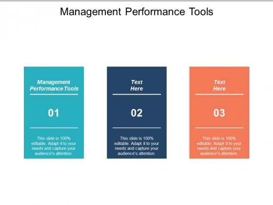 Management Performance Tools Ppt PowerPoint Presentation Introduction Cpb