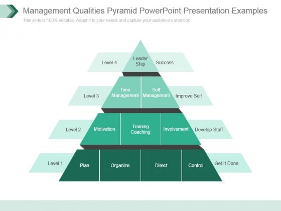 Management Qualities Pyramid Powerpoint Presentation Examples