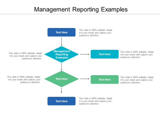 Management Reporting Examples Ppt PowerPoint Presentation Outline Example Cpb