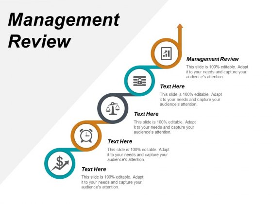 Management Review Ppt PowerPoint Presentation Icon Themes Cpb