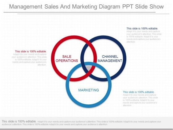 Management Sales And Marketing Diagram Ppt Slide Show