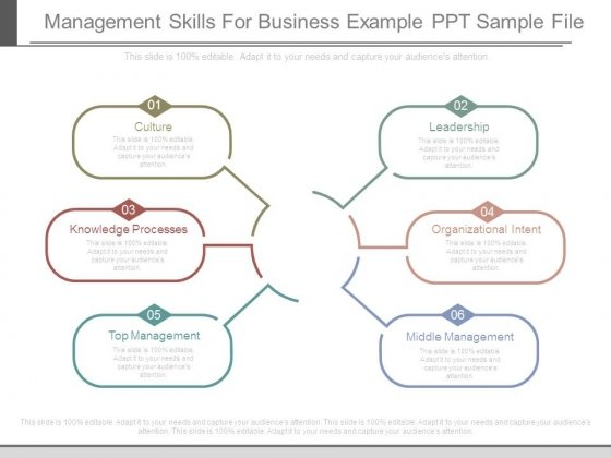 Management Skills For Business Example Ppt Sample File