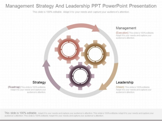 Management Strategy And Leadership Ppt Powerpoint Presentation