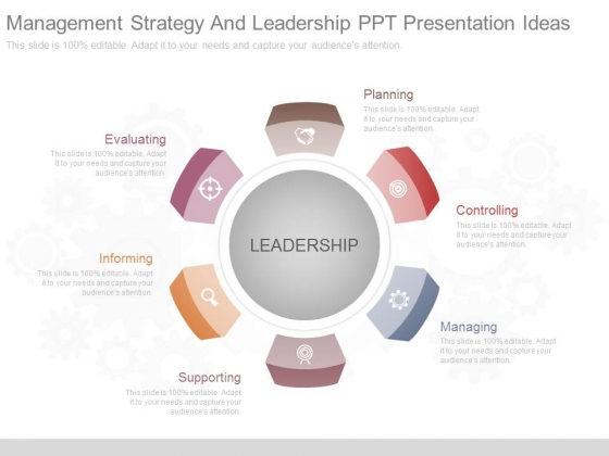 Management Strategy And Leadership Ppt Presentation Ideas