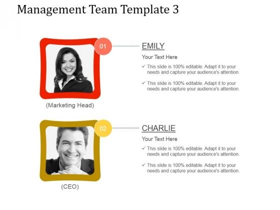 Management Team Template 3 Ppt PowerPoint Presentation Visuals