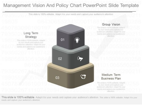 Management Vision And Policy Chart Powerpoint Slide Template