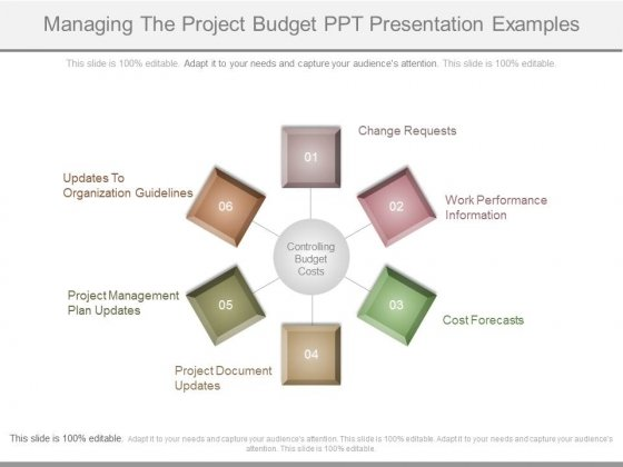 Managing The Project Budget Ppt Presentation Examples