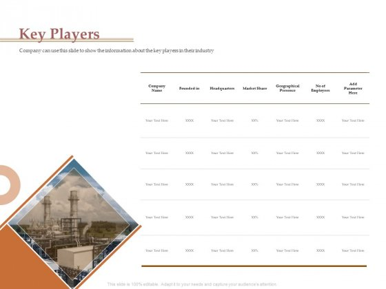 Market Assessment Key Players Ppt Gallery Examples PDF