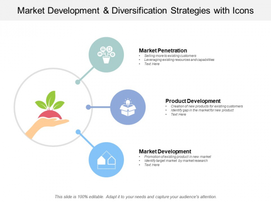 Market Development And Diversification Strategies With Icons Ppt PowerPoint Presentation Styles Professional