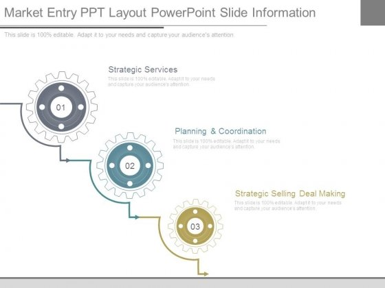 Market Entry Ppt Layout Powerpoint Slide Information