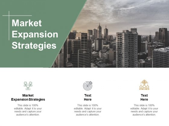 Market Expansion Strategies Ppt Powerpoint Presentation Infographics Clipart Images Cpb